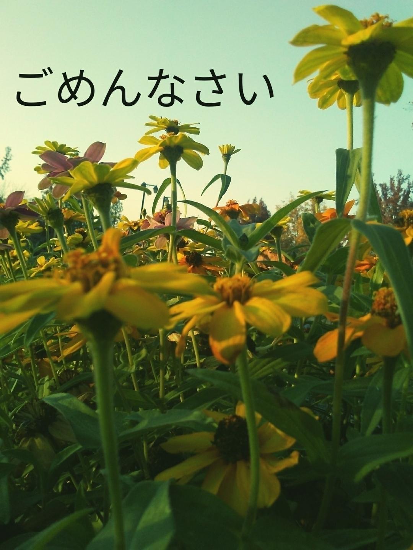 (@bennett858) Cover Image