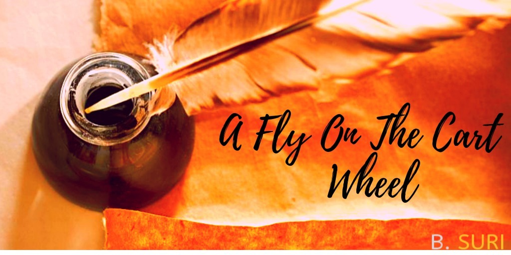 A  Fly on the Cart Wheel (@flyonthecartwheel) Cover Image