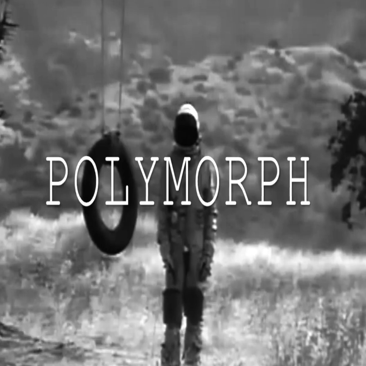 polymorph (@polymorphofficial) Cover Image