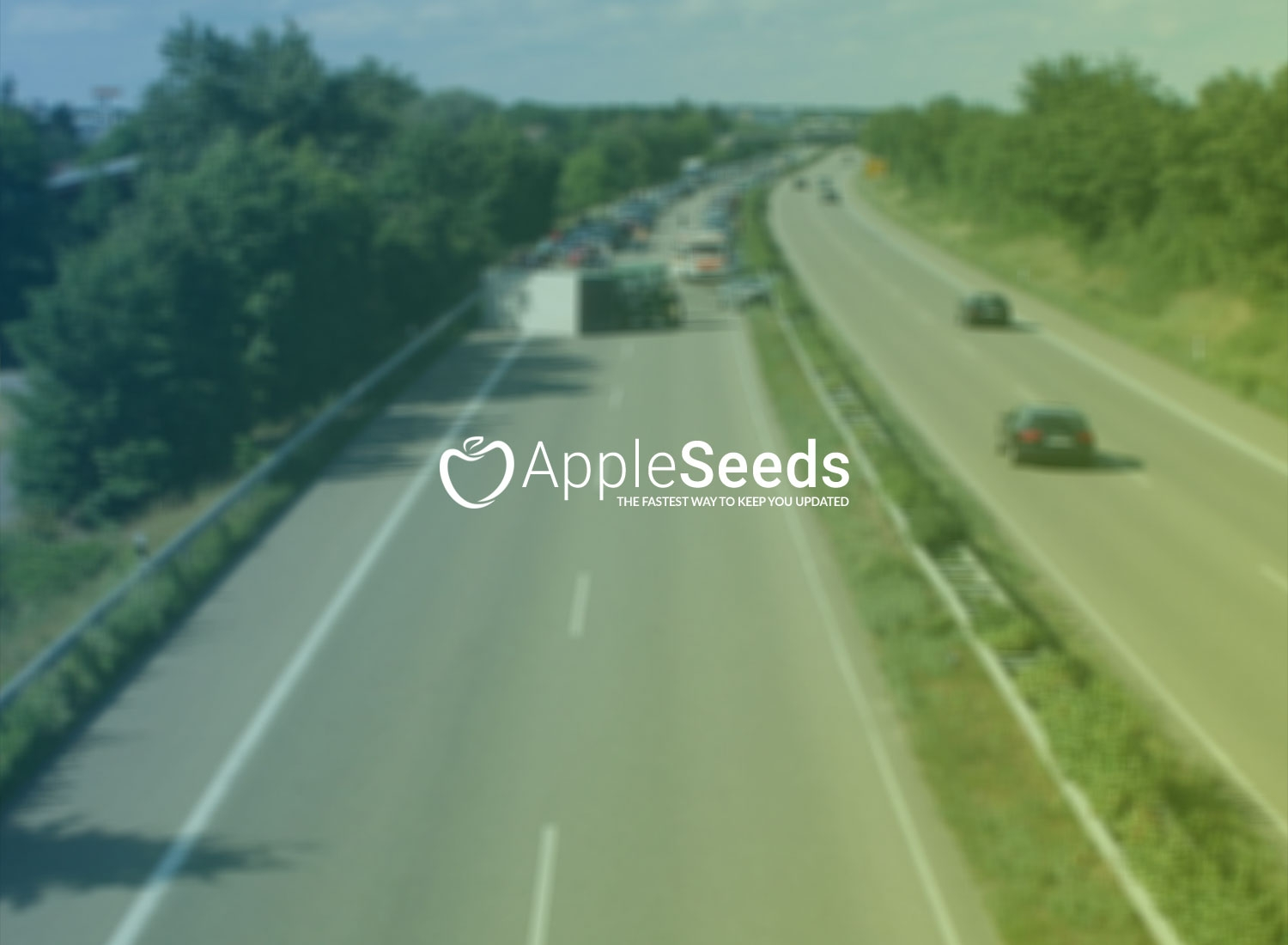 Apple Seeds (@appleseedsnet) Cover Image