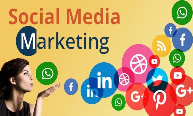 Socialhubmedia (@socialhubmedia) Cover Image