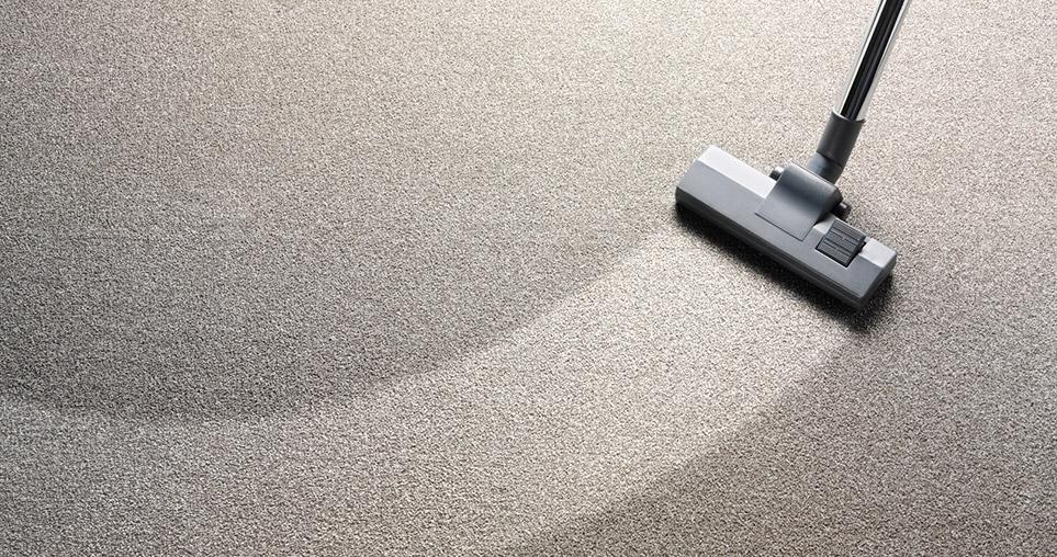 Emergency Carpet Cleaning Sunshine Coast (@carpetcleaning-sunshinecoast) Cover Image