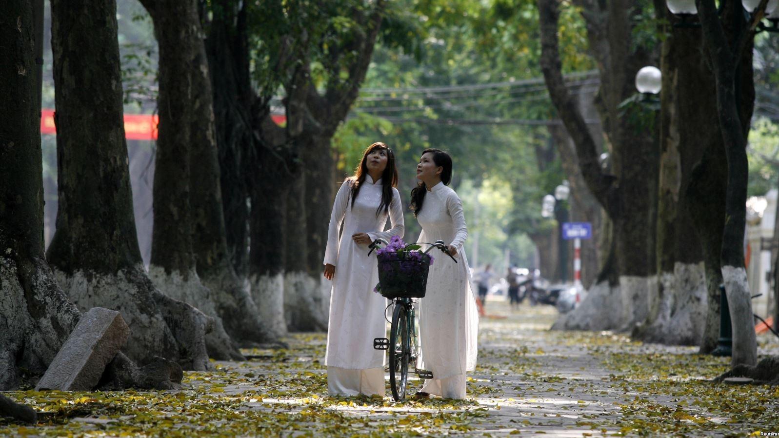 Ha Long (@halong146) Cover Image