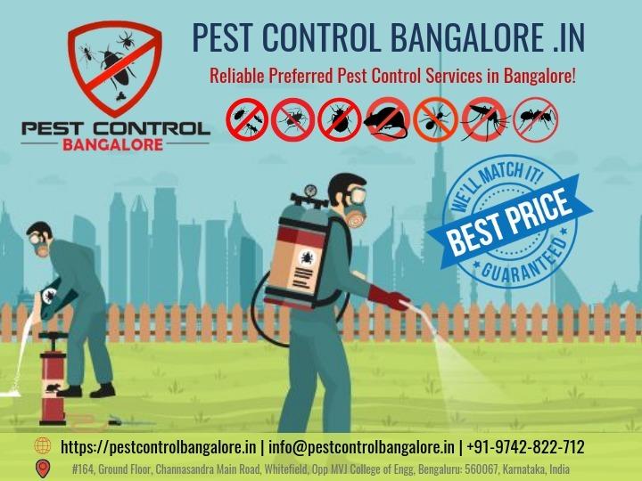 Pest Control Bangalore (@housingsure) Cover Image