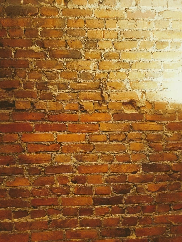 Brick Wall Magic Studios (@brickwallmagicstudios) Cover Image