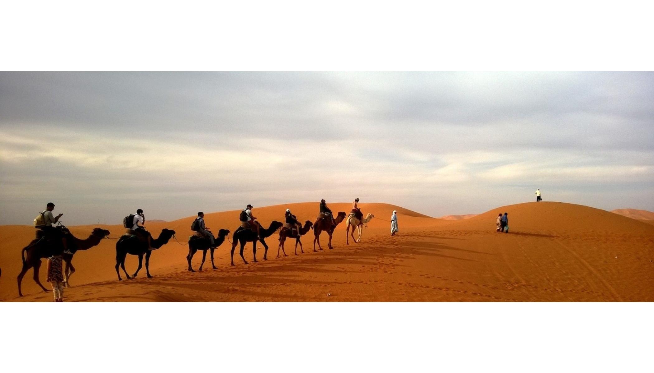 Desert trips morocco (@deserttrips47) Cover Image