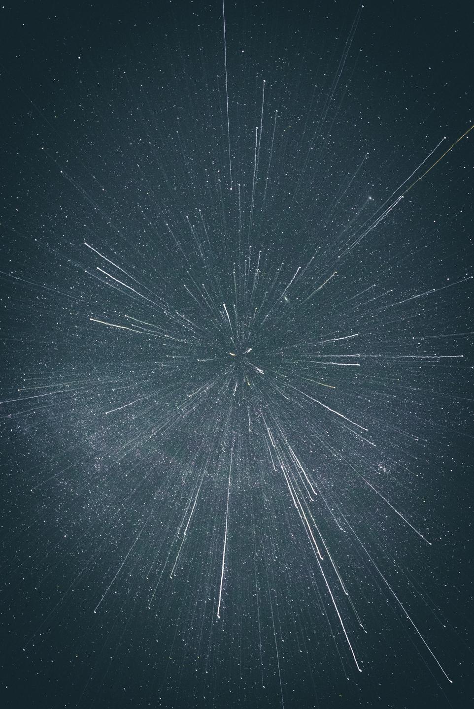 NiñoCactus (@fdogg) Cover Image