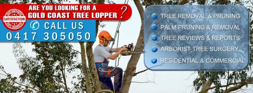 Tree Loppers Gold Coast (@treeloppersgoldcoast) Cover Image