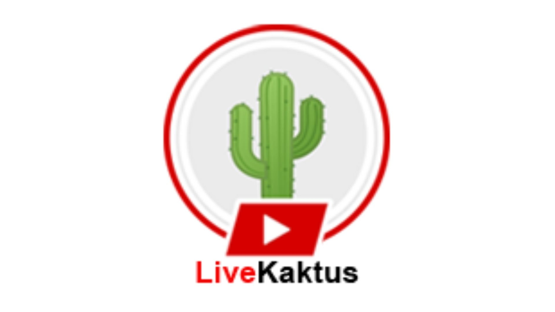 Live Kaktus (@livekaktus) Cover Image