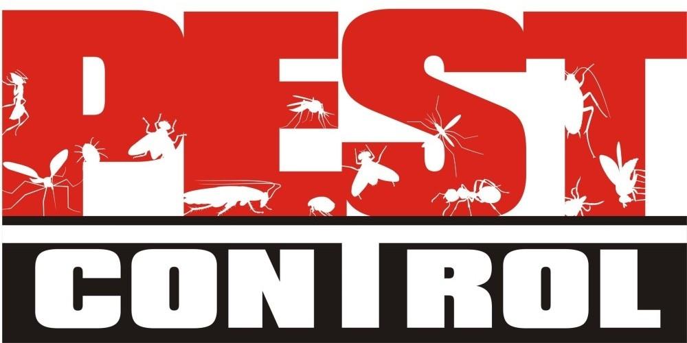 nypestprosite (@nypestprosite) Cover Image