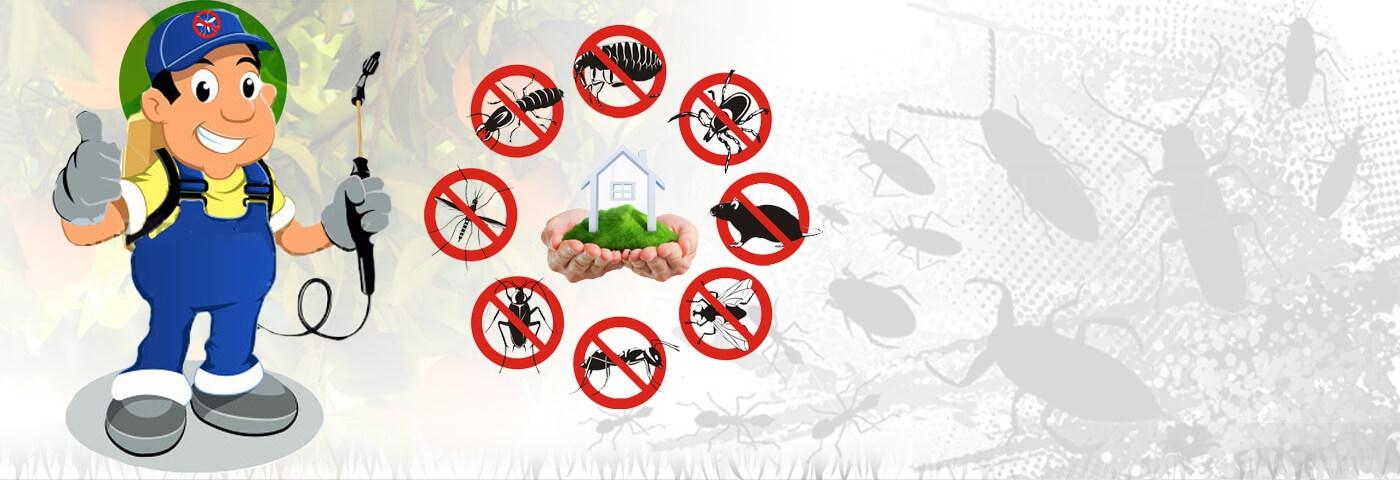 Same Day Pest Control Darlington (@pestcontrolservicesdarlington) Cover Image