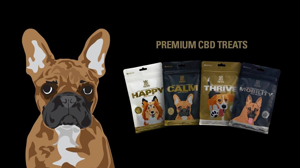 Petness CBD (@petnesslove) Cover Image