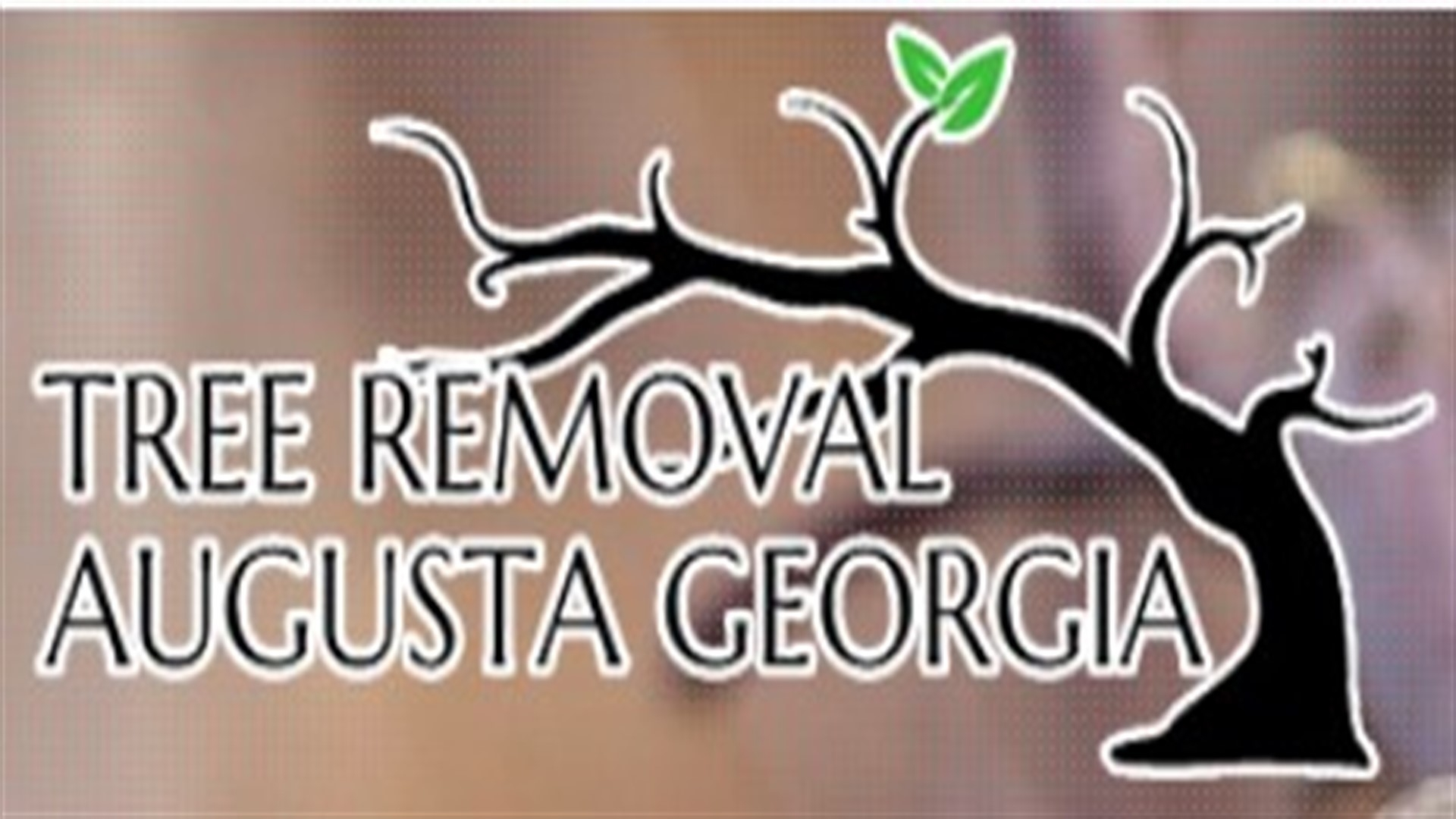 Augusta Tree Service Pros (@treeremovalaugustageorgia) Cover Image