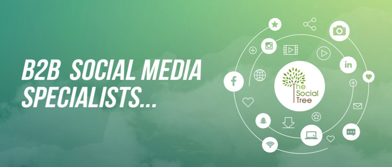 Social Tree Global  (@thesocialtree) Cover Image