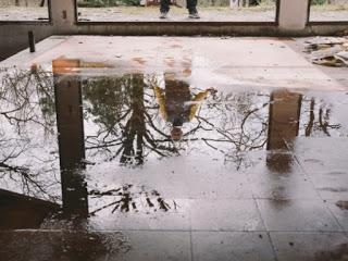 Water Damage Restoration Company Near Me (@damagezumvu12) Cover Image
