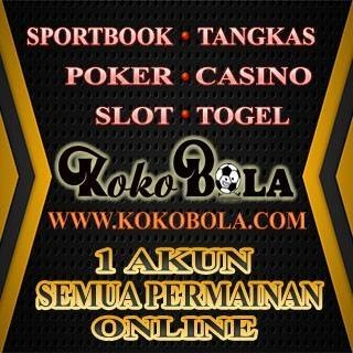 Kokobolabest (@kokobolabest) Cover Image