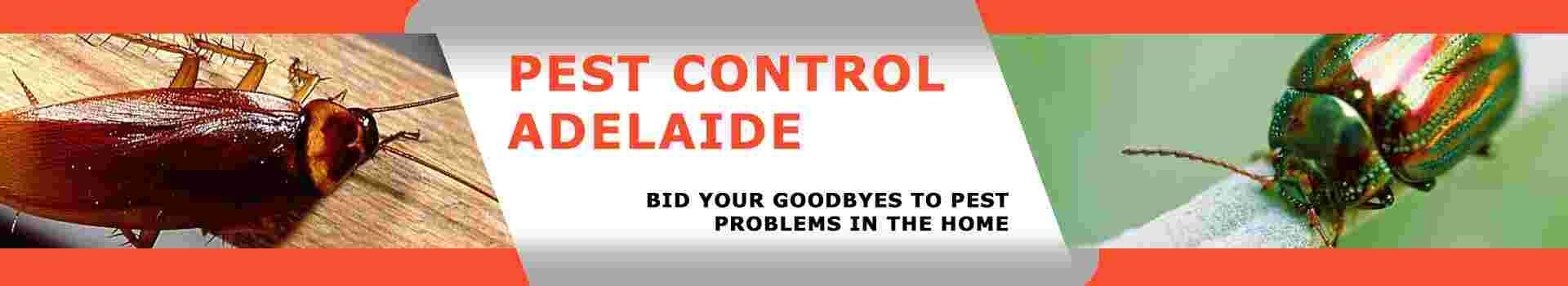 Marks Pest Control Adelaide (@markspestcontroladelaide) Cover Image