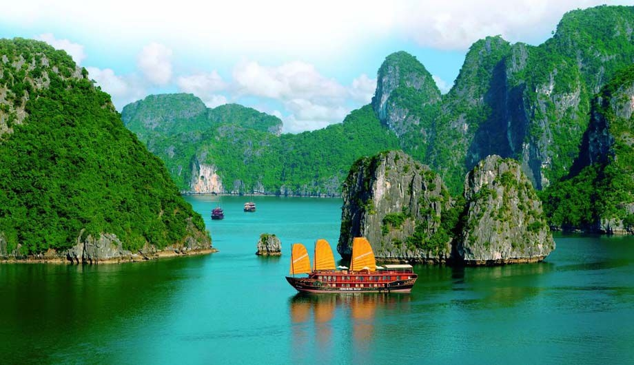 Vietnamese Typing (@vietnamesetyping) Cover Image