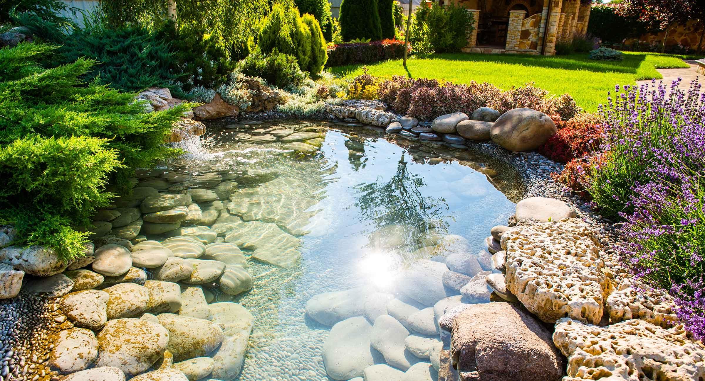 Thiết kế sân vườn đỉnh việt  (@thietkesanvuondinhviet) Cover Image