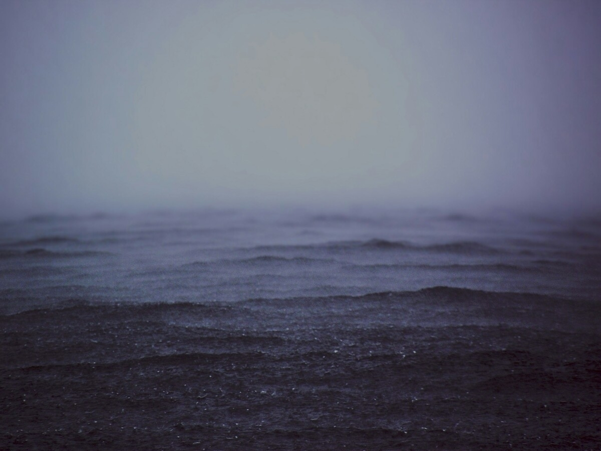 (@sejna) Cover Image