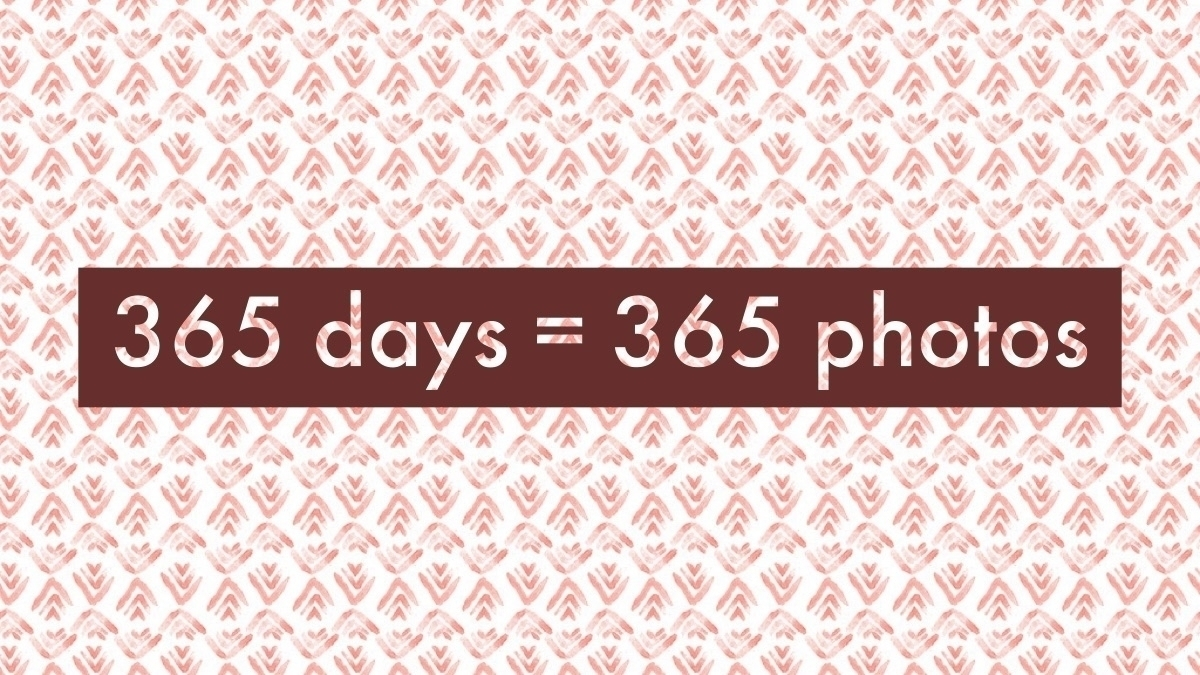 2020 Challenge 365 (@2020challenge365) Cover Image