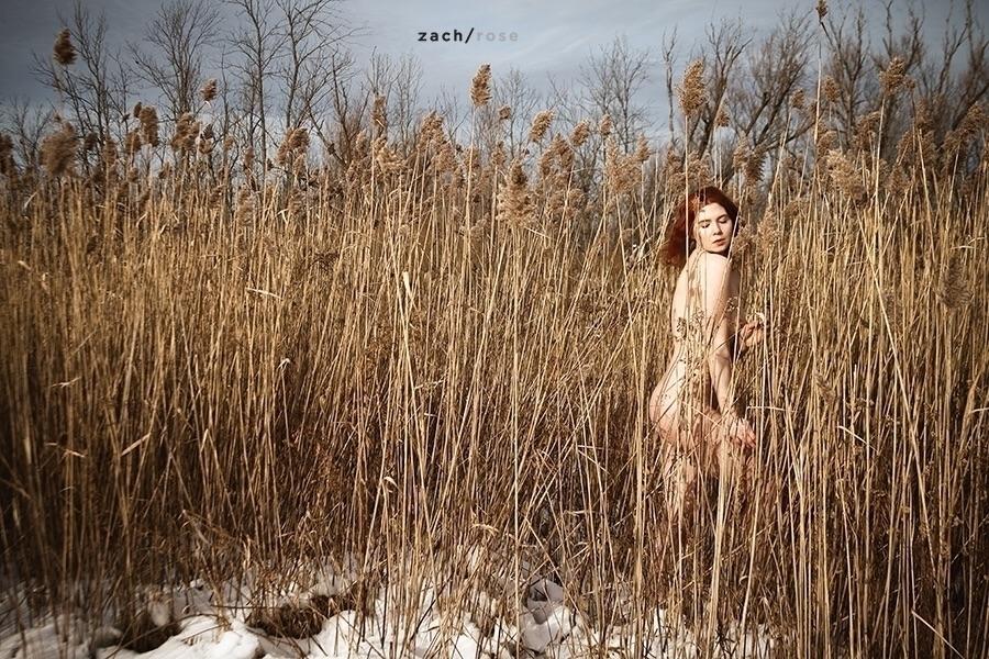 Zach Rose (@zachrosephoto) Cover Image
