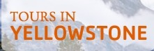 Tours in Yellowstone (@toursyellowstone) Cover Image