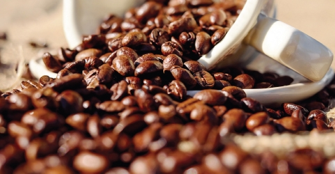 kona coffee (@konacoffee1) Cover Image