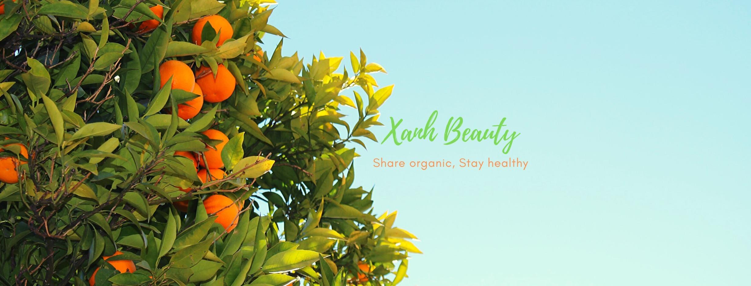 Xanh Beauty (@xanhbeauty) Cover Image