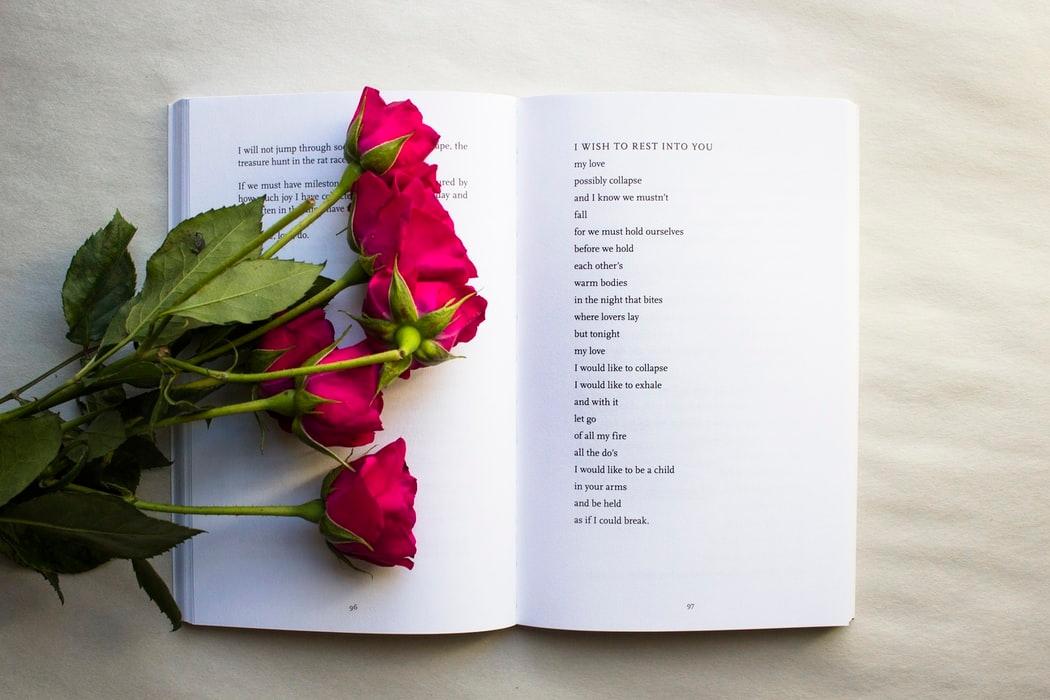 Poezi Shqip (@poezi) Cover Image