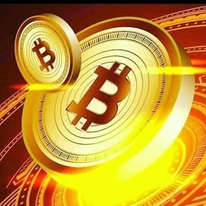 Emilia_bitcoin_trade (@michelle_bitcoin_trade) Cover Image