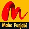 (@mahapunjabi) Cover Image