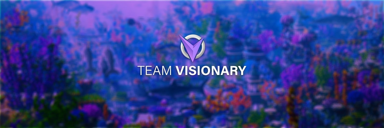 (@teamvisionary) Cover Image