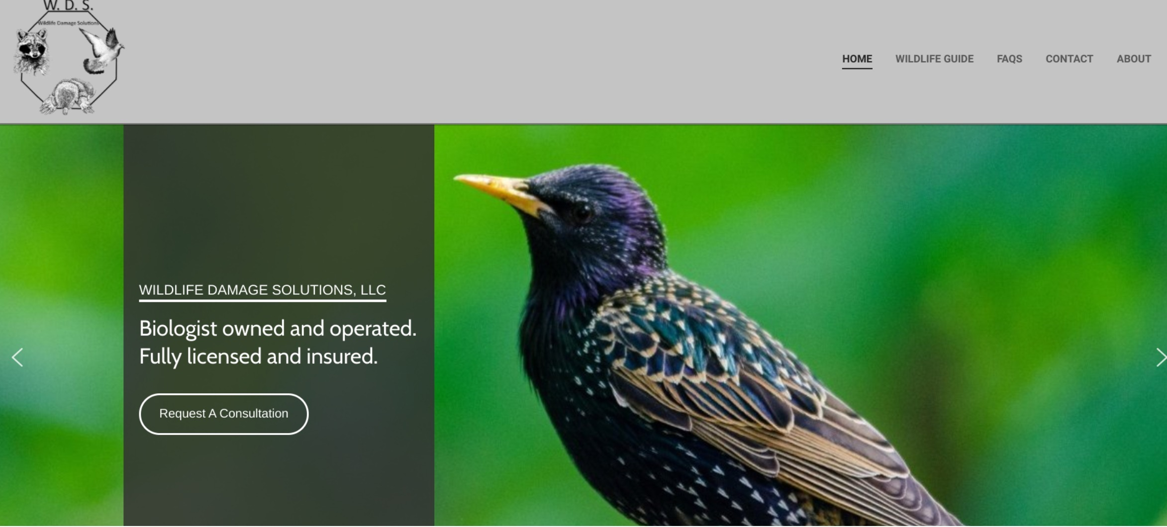 Wildlife Damage Solutions (@wildlifedamagesolutions) Cover Image
