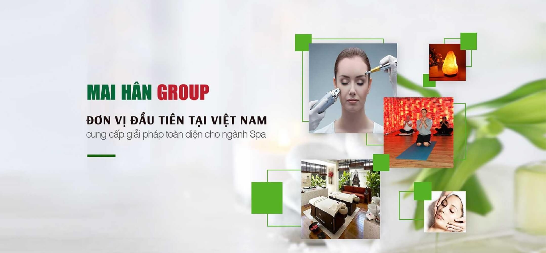 Mai Hân Group Setup trọn gói spa (@groupmaihanspa) Cover Image