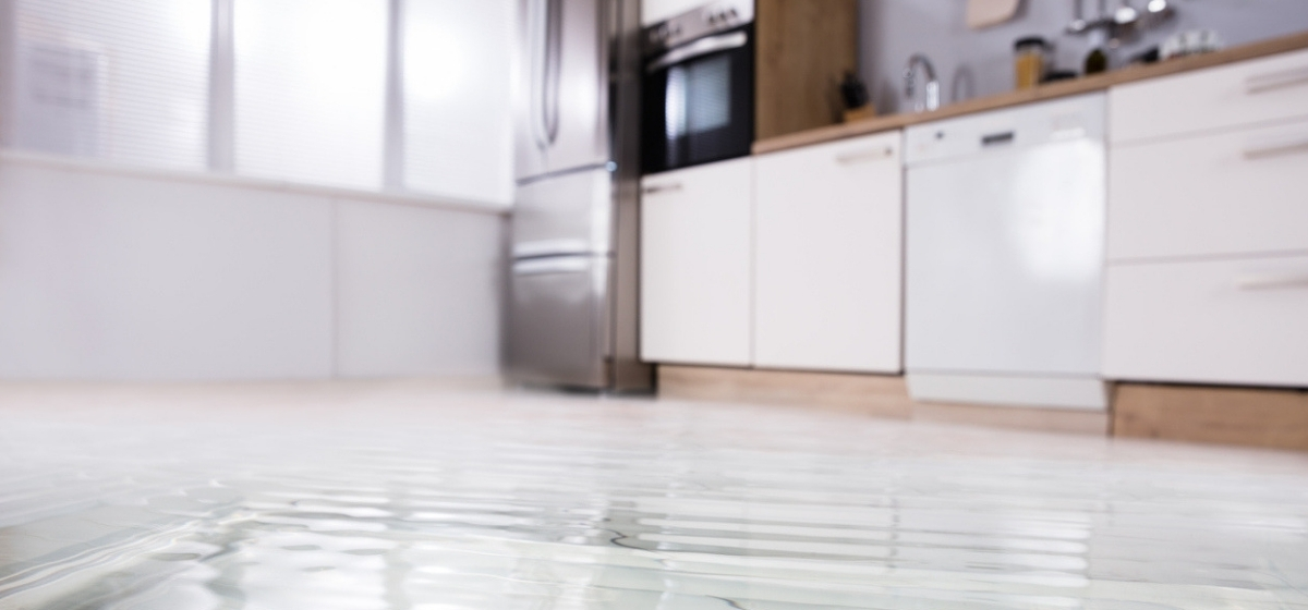 Water Damage Removal Brooklyn (@damageremoval) Cover Image