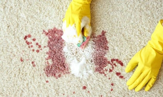Carpet Cleaning Kew (@carpetcleaningkew) Cover Image