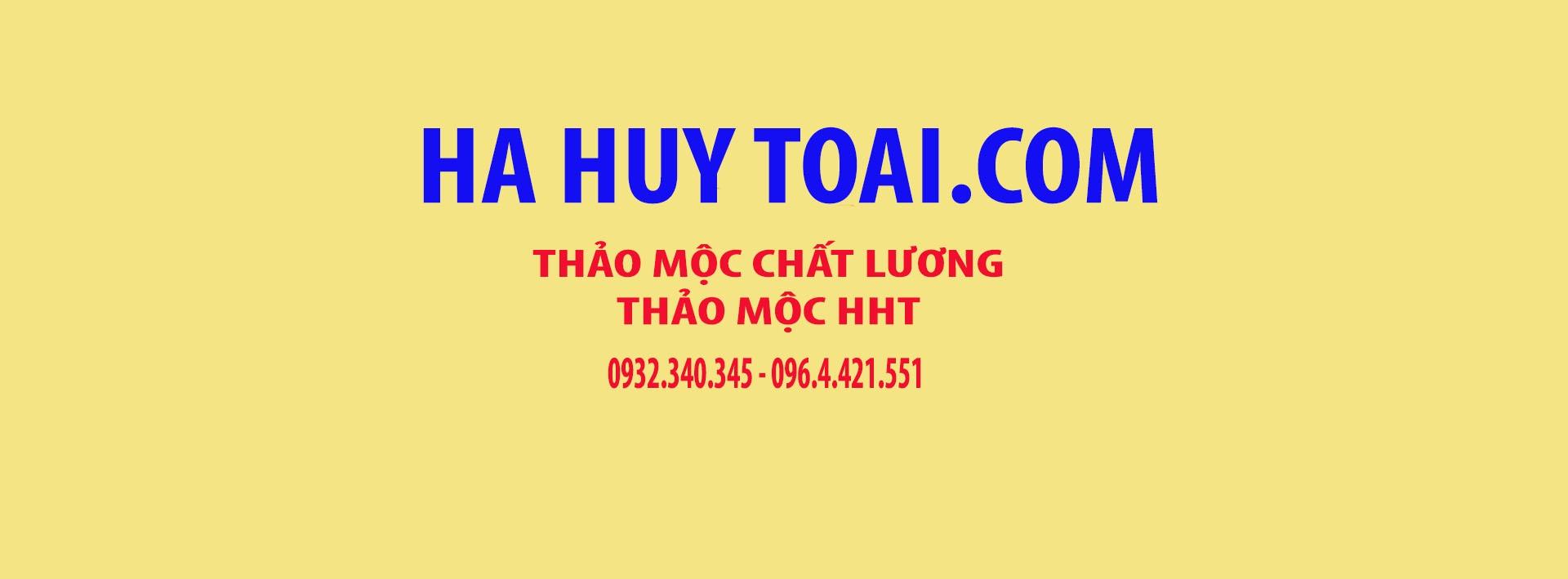 Ha Huy Toai (@hahuytoai) Cover Image
