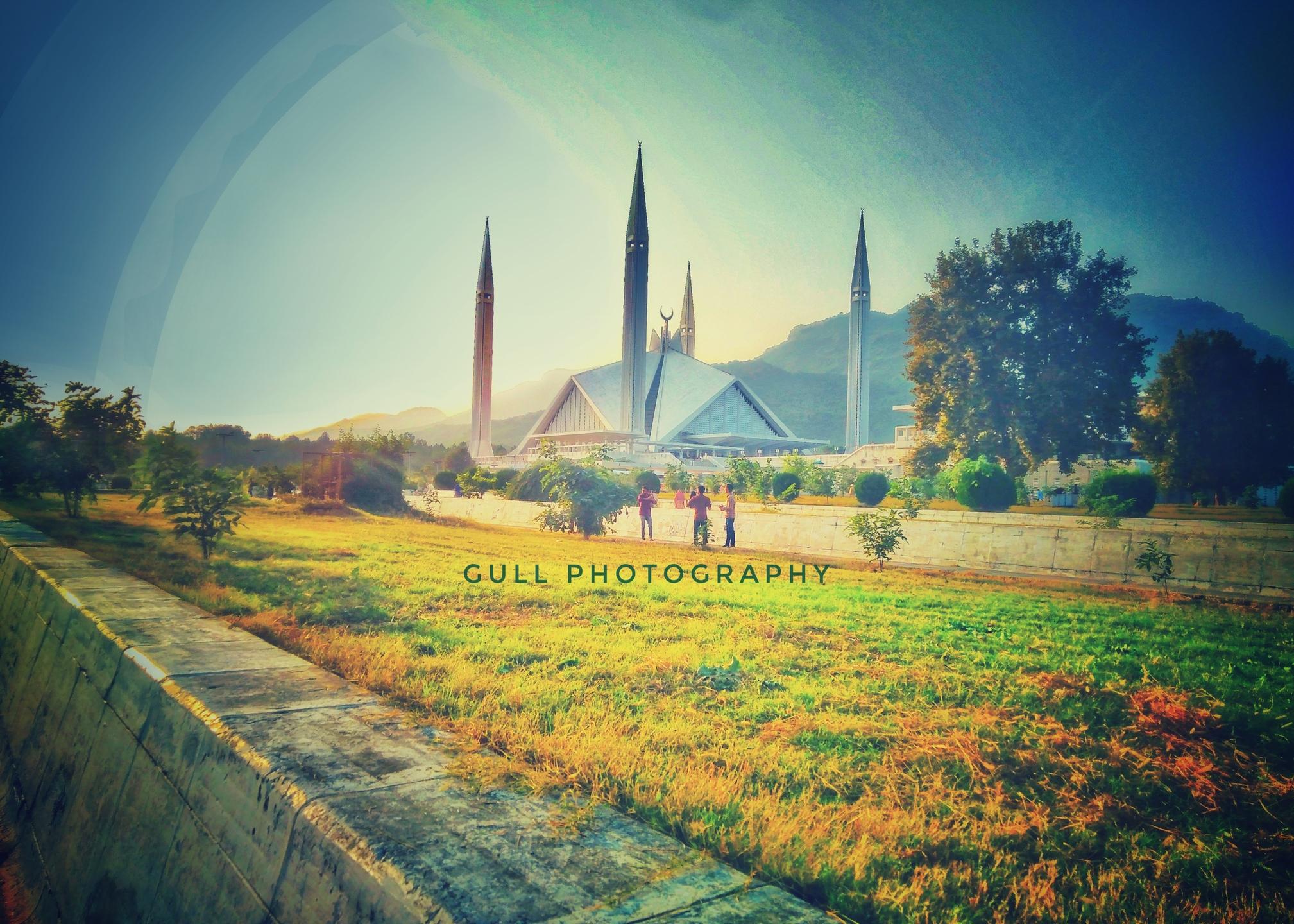 Muhammad Haseeb Gul (@haseebgul341) Cover Image