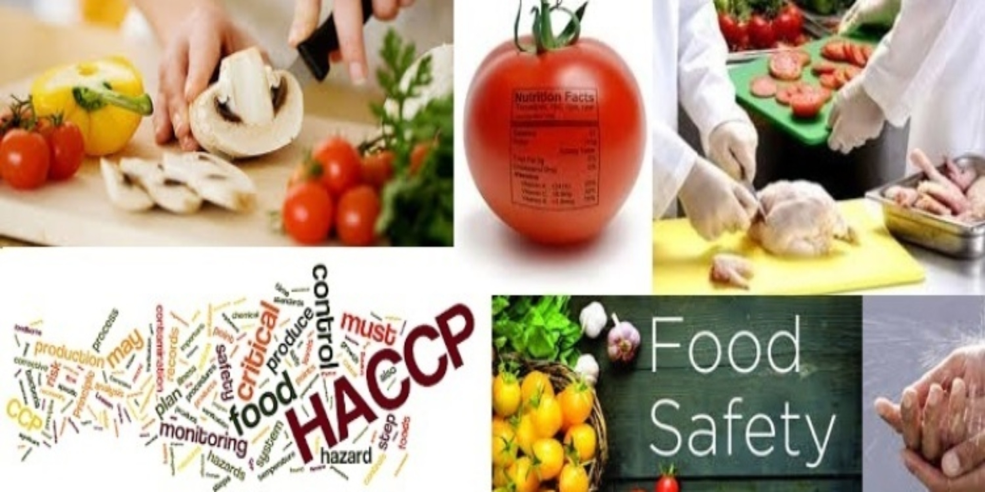 BD Food Safety Consul (@bdfoodsafety12) Cover Image