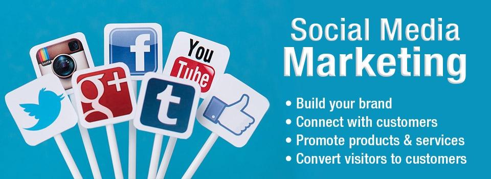 Socialkit (@socialkit) Cover Image