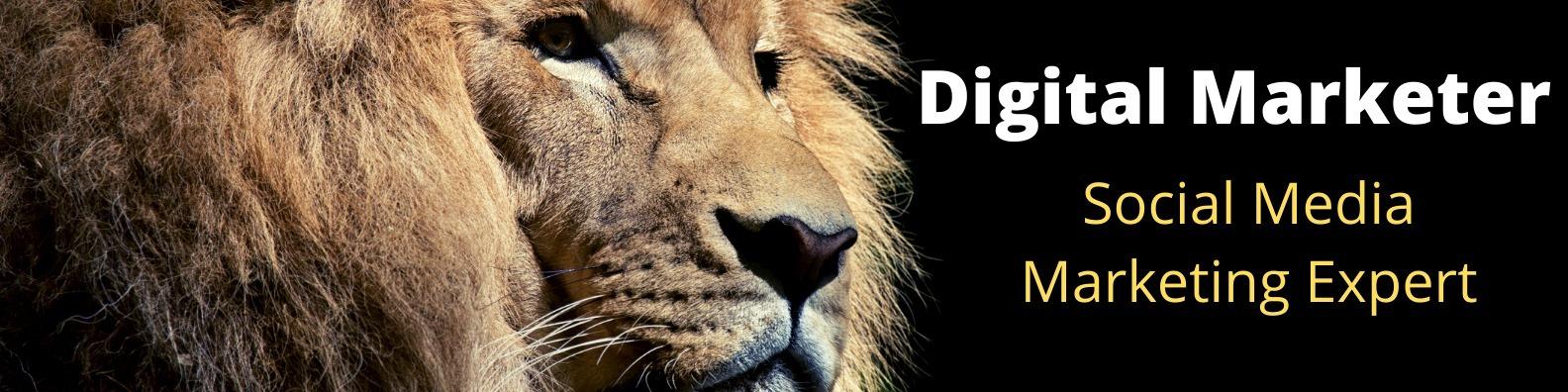 (@hossainraja33) Cover Image