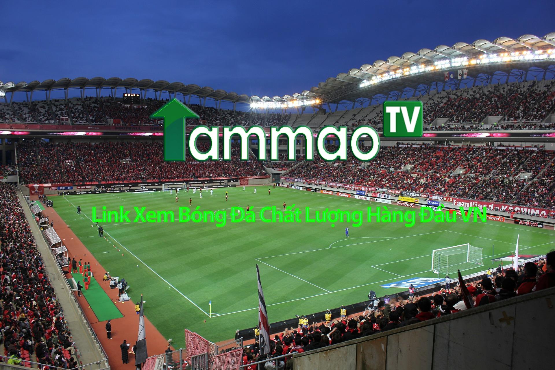 TamMao TV (@tttammaotv) Cover Image