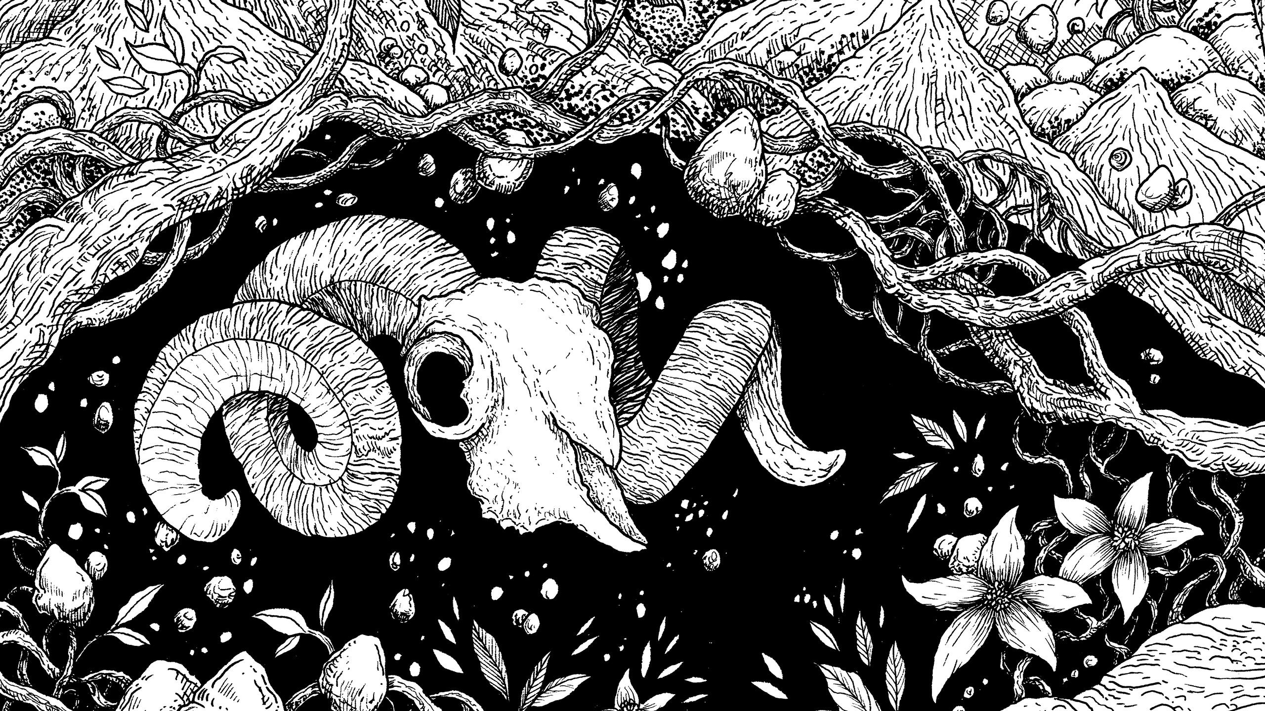 Strangeforest (@strangeforest) Cover Image