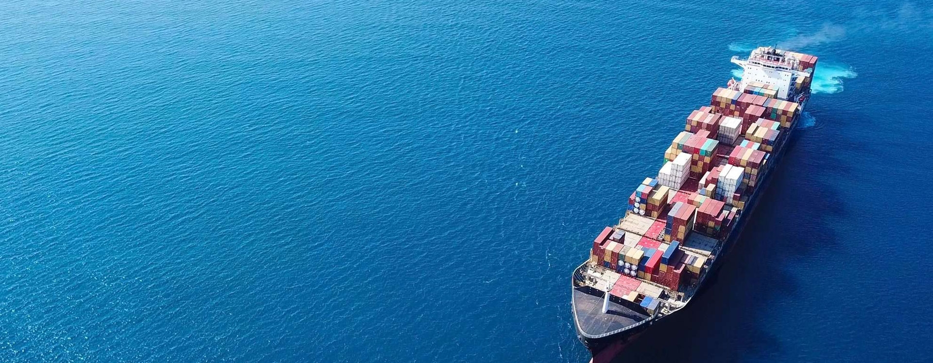 Blue Bird Shipping Agency in Dubai (@bluebirdshipping) Cover Image