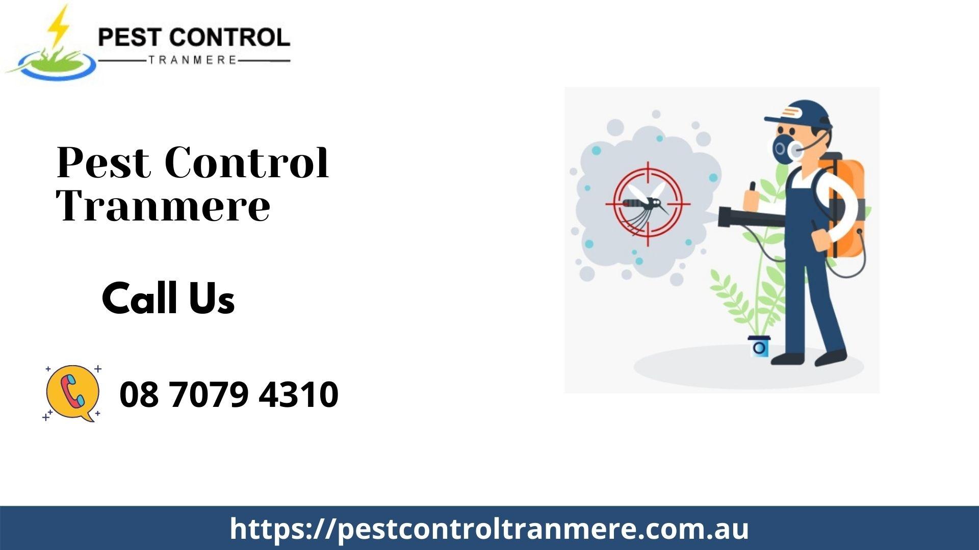 Pest Control  (@pestcontroltranmere) Cover Image