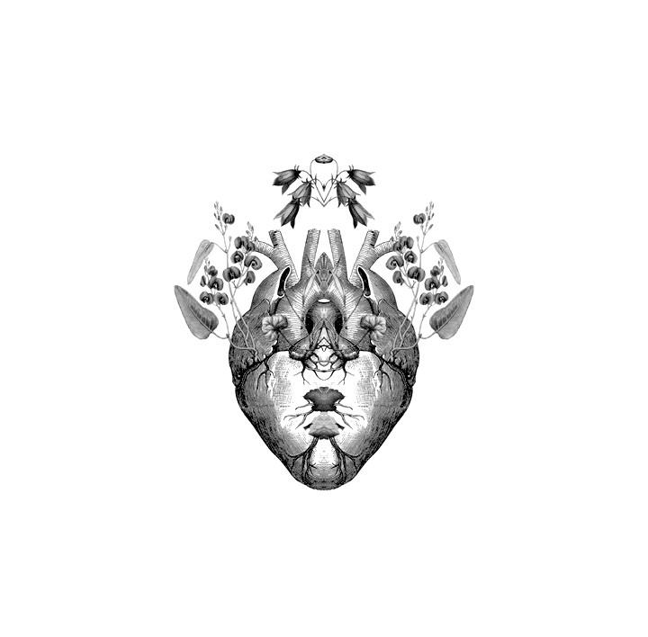 Heber Lorrey (@microrealidad) Cover Image