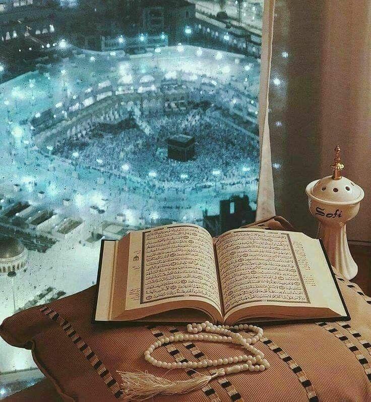 Noor Quran Tutor  (@noorquran) Cover Image