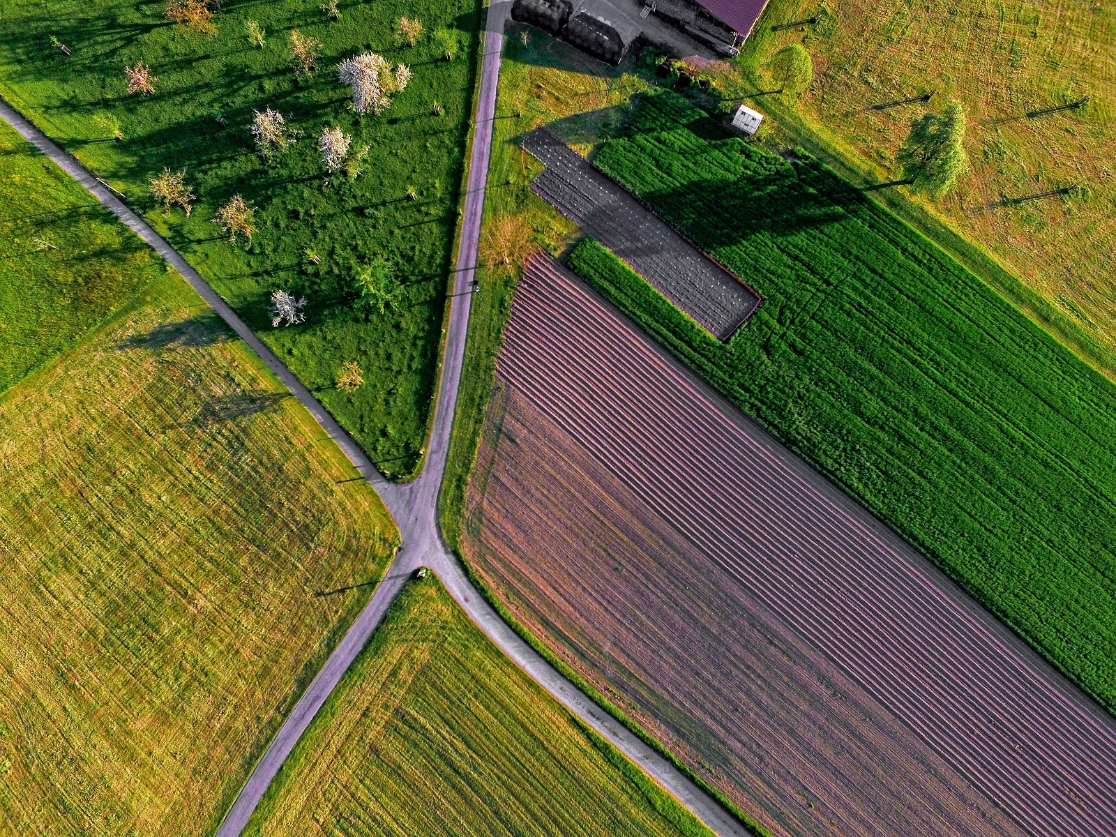 Aim Farmlands (@aimfarmlands) Cover Image