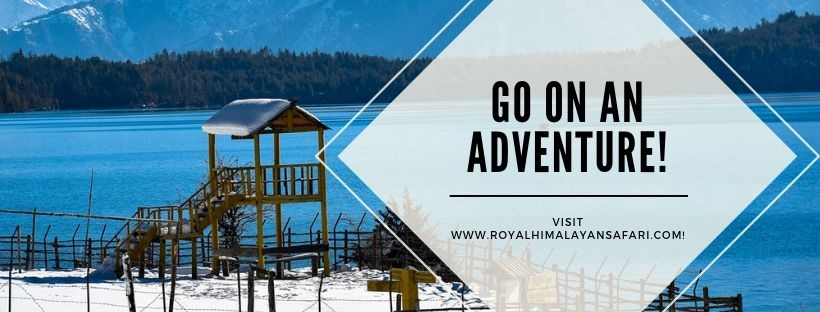Royal Himalayan Safari Tours (@royalhimalayansafari) Cover Image